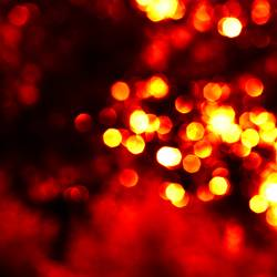 .licht