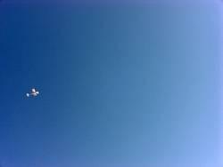 flug 2