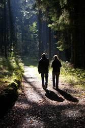 Wanderer im Herbstwald