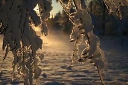 Winter sunset in Sweden