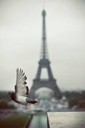 Pariser Abflug