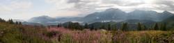Sommermorgen in den Alpen