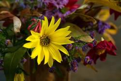Ein kleiner Blumengruß