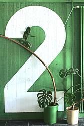 Grüne Zwei