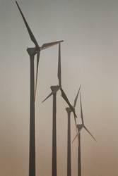 Windkraft im Abendlicht