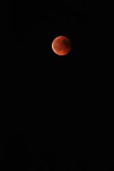 Mond in rot