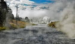 im Yellowstone NP