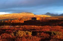 Morgenstimmung in Rondane