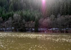 am See