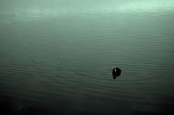 Lonly in der Einsamkeit
