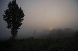 Verschwinden im Nebel - Der Morgen