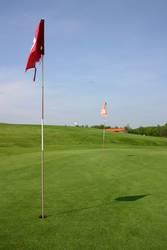 golfers green