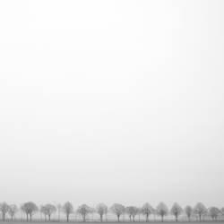 Winterallee_1