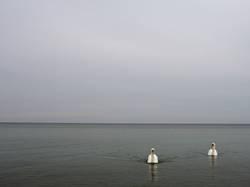 Wenig ist Meer