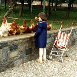 Flocki und ich bei den Hühnern