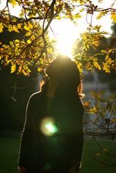 Der Sonne trotzen