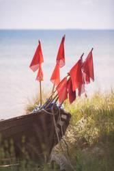 Hisst die Flaggen