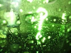 ?Green Question?