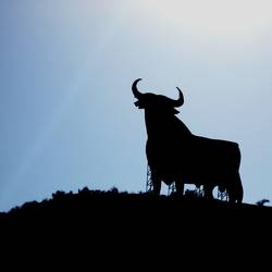 El Toro (Spanien)