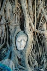 Wat Mahatat