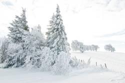 bald wird`s kälter !!