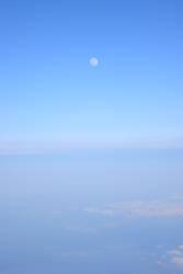 flight 7845