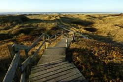 Die Treppe zu Meer