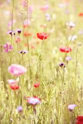 flora liebt euch!