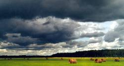 regenschirmwetter