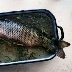 Fisch zu Karfreitag