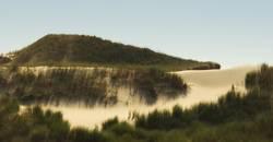 Inseln im Sand