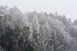 Frost so weit die Augen sehen