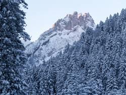 Alpstein im Morgengrauen