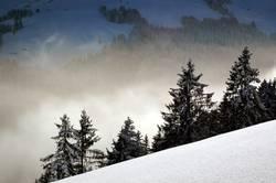 Mountain Dreamworld IV.