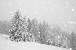 der Fall des Winters