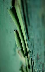 ...SOFT GREEN I...
