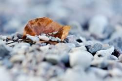 zudecke aus stein