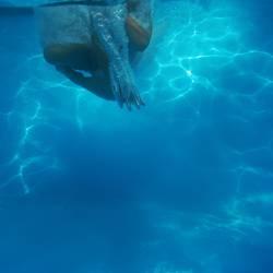 Unterwasser-Art