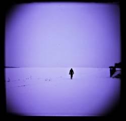 Einsam in die Stille