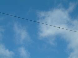 Der Knoten im Himmel