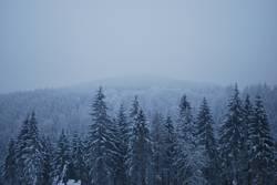 Winteraussichten
