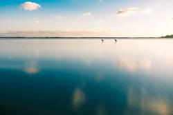 Auf Wasser laufen