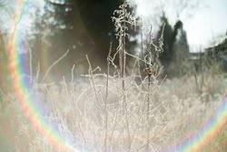 Zauberbunterfarbenfrostflash
