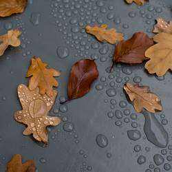 Herbstgrau