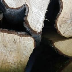 Baumaterial / Holz vor der Hütte