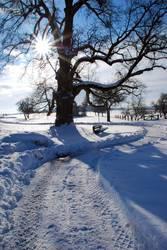 Wintertag in Jungingen