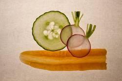 Gemüsescheiben - Gurke, Radieschen und Karotte