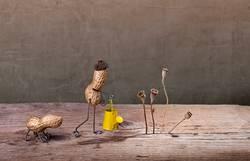 Simple Things, Gartenarbeit