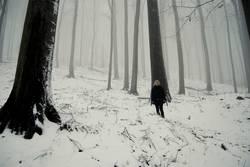 ...steht im Walde...