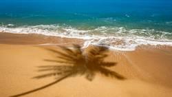 Strand mit Schatten einer Palme
